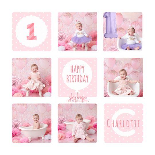 Birthday collage photo of one-year-old girl birthday milestone session
