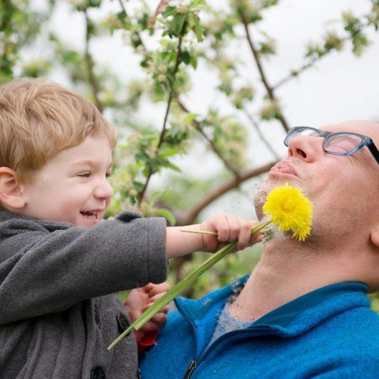 Preschool boy with dandelion in daddys face